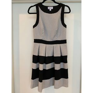 Elle Fit and Flare Dress Size 4